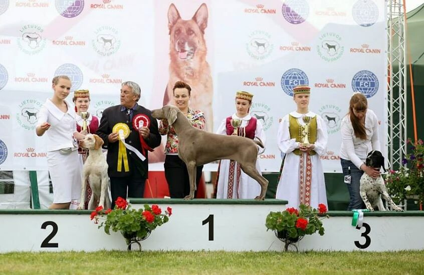 International Dog Show Moletai 2016