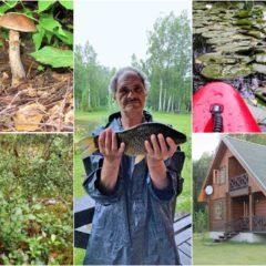Ягоды, грибы, рыбалка и байдарки в усадьбе Стирнялес Венседис